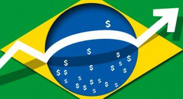 papel-do-brasil-7